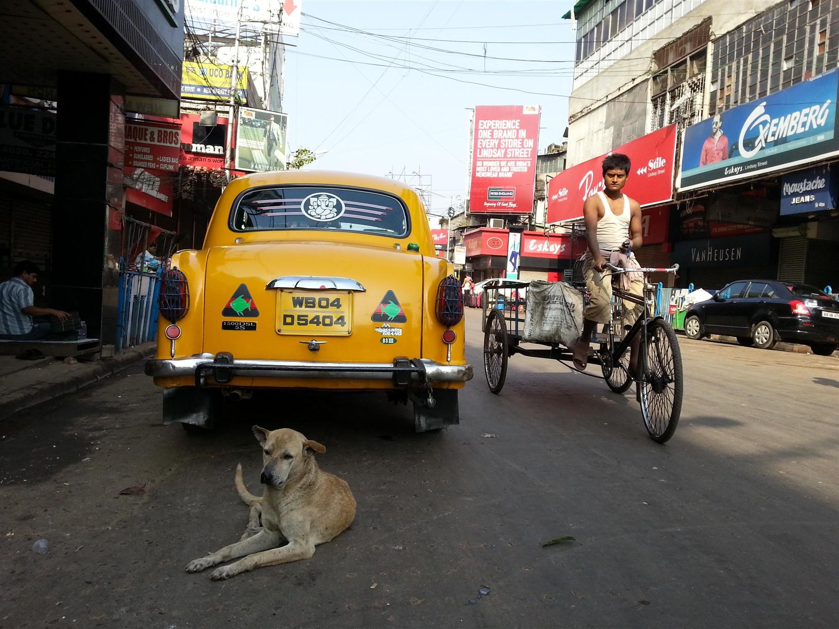 Kolkata sokakları.