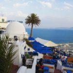 Sidi Bou Said'in ucunda yer alan ve marinaya tepeden bakan meşhur cafe. (Cafe des délices)