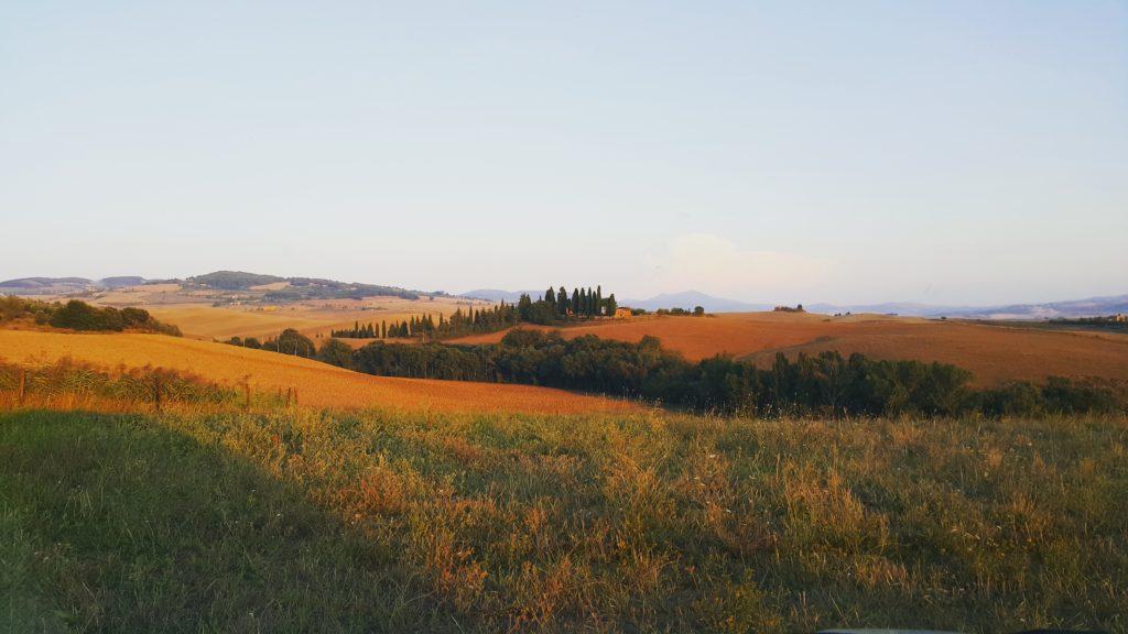 Pienza yakınlarından tipik bir Toskana manzarası: Yumuşak tepeler ve sıra sıra servi ağaçları